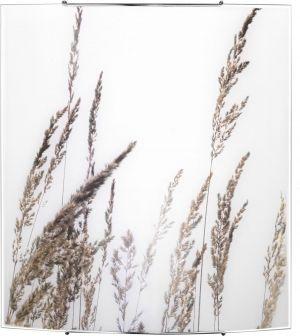 BROWN GRASS 5 5615