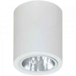 DOWNLIGHT round white 7234